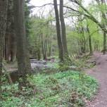 Wanderweg 5