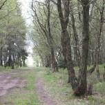 Wanderweg 6