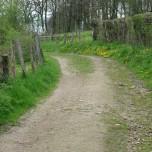 Wanderweg 7