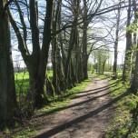 Wanderweg in Roetgen