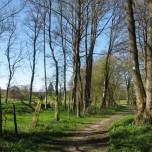 Wanderweg 1