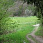 Wanderweg 8