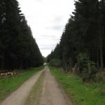 Wanderweg 3