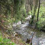 Perlenbach