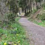 Wanderweg 4