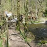 Brücke über die Rur