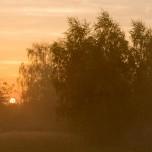 Nebel bei Glindow III