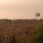 Boot auf dem Schwielowsee I