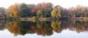 Petzower Park im Herbst