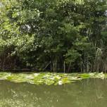 Kanalufer II