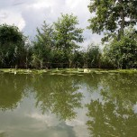 Kanalufer III