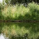Kanalufer V