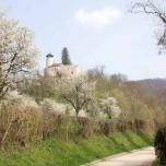 Burg Birseck III