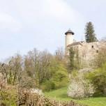 Burg Birseck II