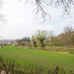 Landschaftsgarten I