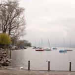 Ufer des Zürichsees II