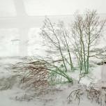 Winterlandschaft vom Glacier Express aus I