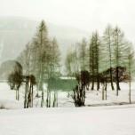Winterlandschaft vom Glacier Express aus II