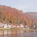 Herbstwald über Wehlen