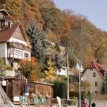 Herbst in Wehlen