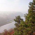 Blick auf die Elbe I