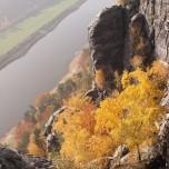 Blick auf die Elbe von der Bastei aus V