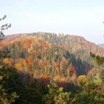 Herbstlicher Ausblick I