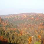 Herbstlicher Ausblick II