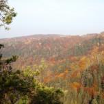 Herbstlicher Ausblick III