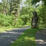 Radweg bei den Götzer Bergen