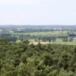 Blick vom Aussichtsturm II