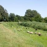 Havelradweg III