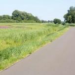 Havelradweg IV