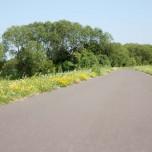 Havelradweg VI
