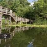 Brücke IV