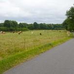Radweg IV