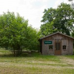 Maulbeerbaum & Dorfmuseum