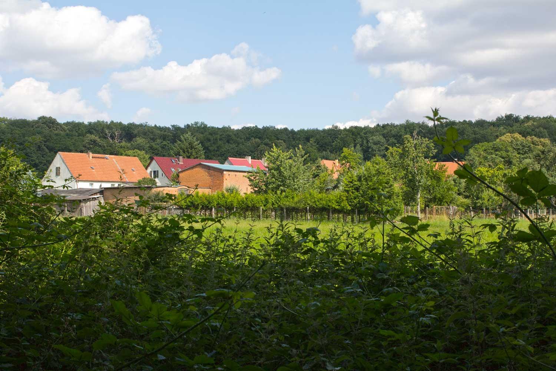 Blick nach Altkünkendorf