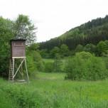 Hochsitz im Liesertal