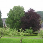 Klostergarten I
