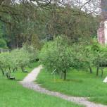 Klostergarten III