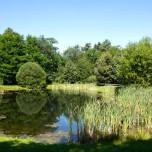 Teich am Gutshofes
