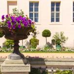 Blumenschale am Schloss