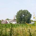 Blick nach Lietzow