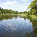 Großer Behnitzer See V