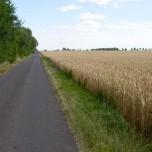 Radweg III