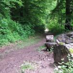 Wanderweg IV