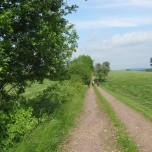 Wanderweg VII