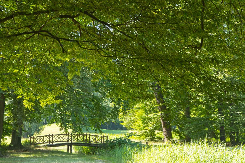Romantische Brücke im Branitzer Park