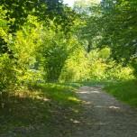 Parkweg III